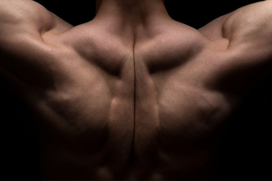 Strength Goals: How to Do 10 Pull-Ups 3