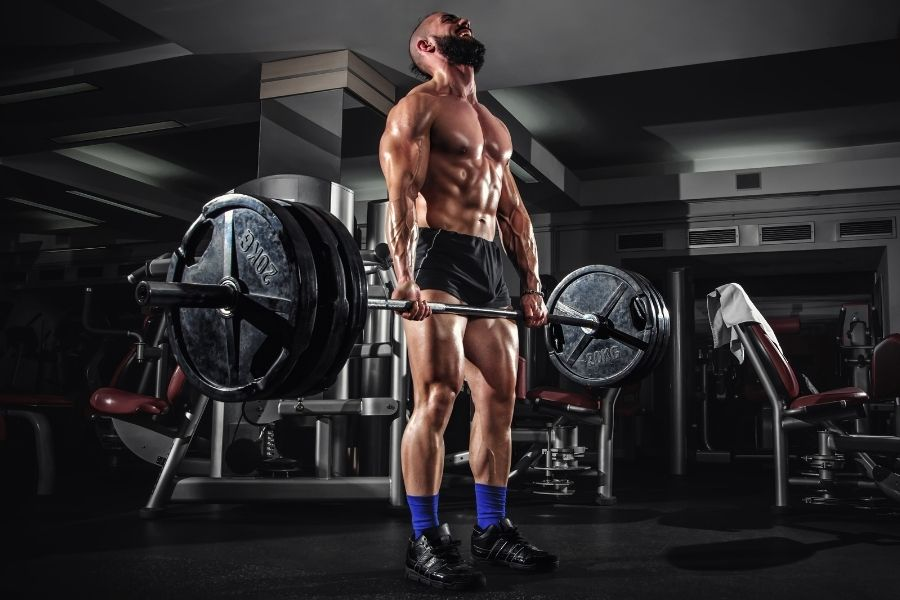 bumper plates or steel plates